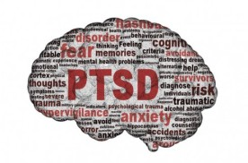 ptsd-brain-e1392825630316